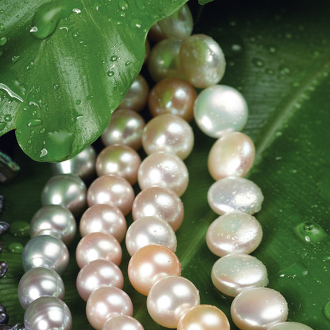 Pearls For All Styles